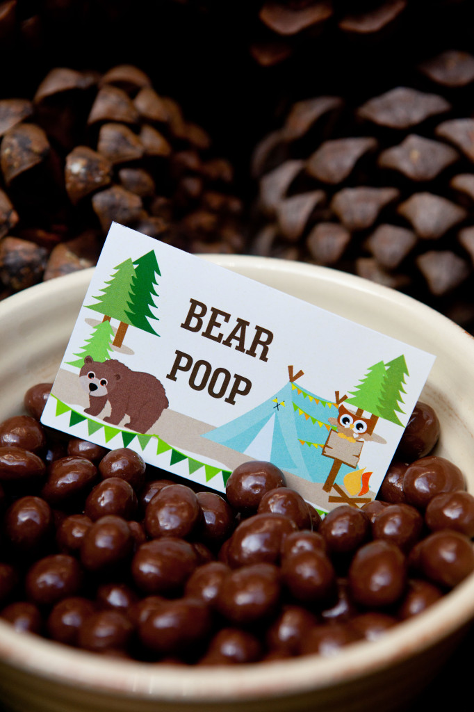 Bear-Poop-Camping-Party-Food-Ideas-682x1024