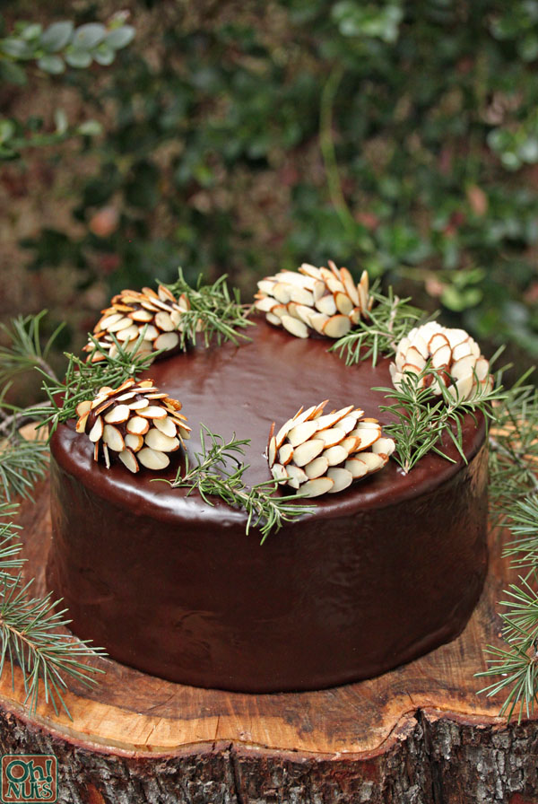 chocolate-pinecones-4