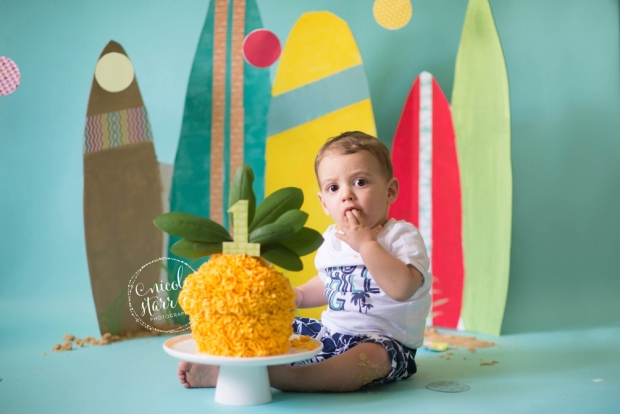 boston family photographer pineapple birthday cake smash