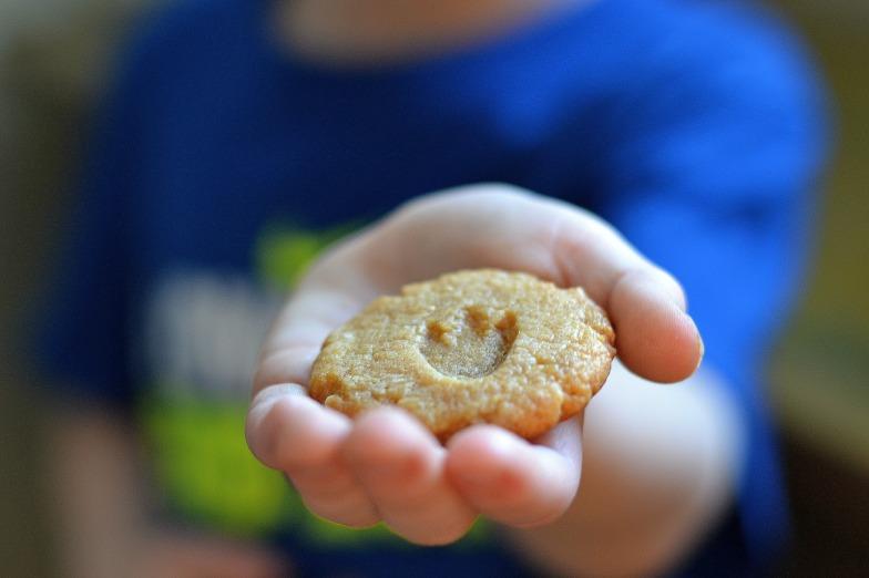 peanut butter t-rex cookies