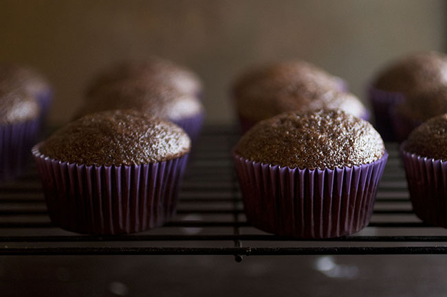 how-to-store-cupcakes (1)