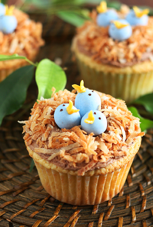 birds-nest-cupcakes-edit.jpg