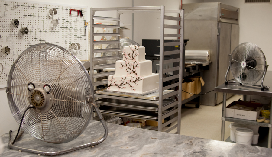 Drying-Fondant-Cake-1-of-1.jpg