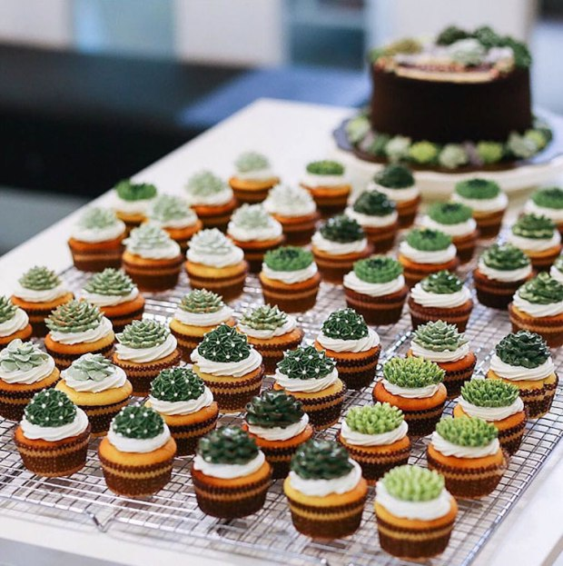 ivenoven-succulent-cakes-16